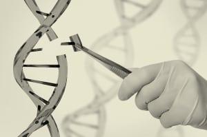 המכון לגנטיקה